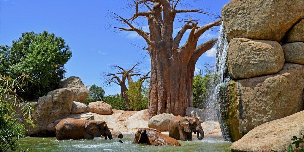 Valencia Bioparc zoo expansion